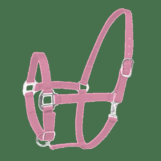 Hofman Halter Eccellente rosa