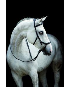 Redini da gara Horseware Rambo Micklem in cuoio inglese