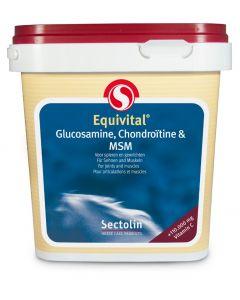Sectolin Equivital Glucosamina, condroitina e MSM 1 kg