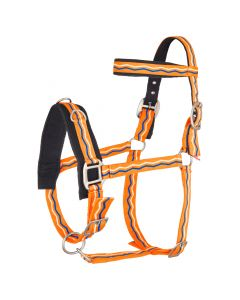 Nylon di cavalcavia Imperial Riding Lunge