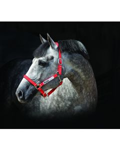 Capezza Horseware Field Safe