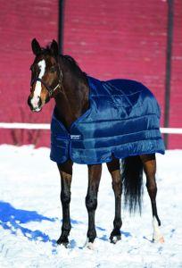Sottocoperta Pony Horseware 200g