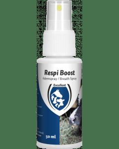 Hofman Respi Boost (Spray Respiratorio)