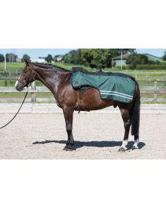 Harry's Horse Foglio di esercizio 0gr pile