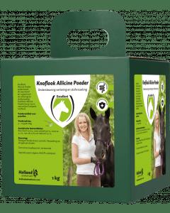 Excellent Allicin Powder EU (aglio in polvere)