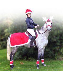 QHP Foglio per esercizi Natale rosso L
