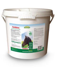 Secchio polvere Sectolin OerBalance - Ecostyle 4 kg