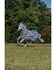 Bucas Zebra dolce-pruriginosa