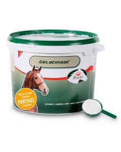 Sectolin Cavallo di Gelatinaat - PrimeVal