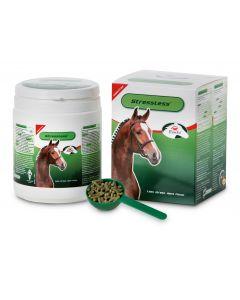 Sectolin Cavallo senza stress - PrimeVal
