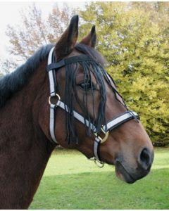 Hofman Cintura da sopracciglia Cavallo
