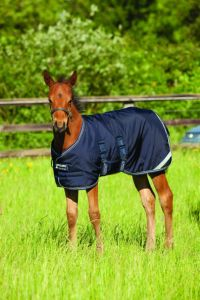 Coperta Horseware Amigo Medium 200 g