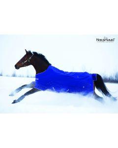Horseware Amigo Hero 6 Pony Turnout Medium 200 g