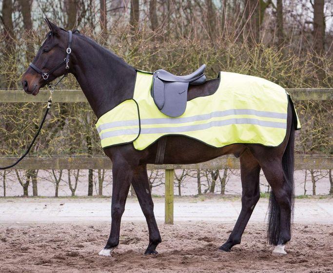 Harry's Horse Foglio di esercizio riflettente